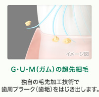 G・U・M(ガム)の超先細毛 独自の毛先加工技術で歯周プラーク(歯垢)をはじき出します。